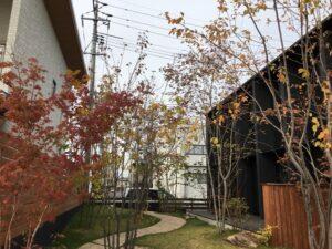 秋のモデルハウス